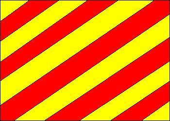 Code Flag Y