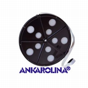 Ankarolina