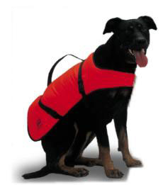 Large Dog Buoyancy Aid